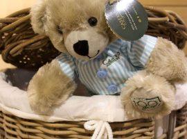 Casey the Bedtime Bear is back!