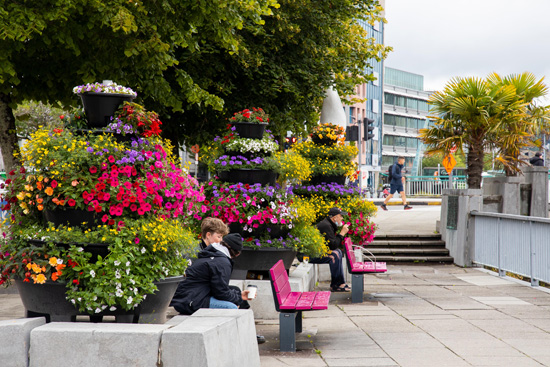 South mall planters